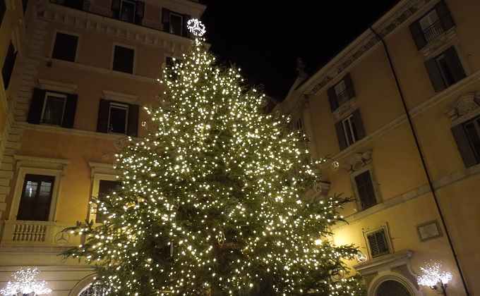 yuローマ2日目夜クリスマスツリー