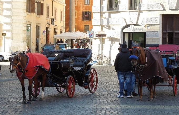 yuローマパンテオン外に馬